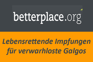 Galgofreedom Betterplace.com