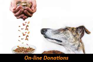 on-line donations